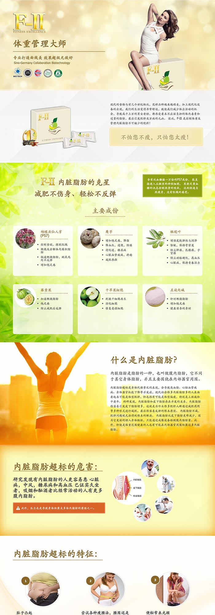 F-II Product Webpage Design (Chinese)