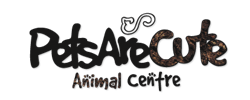 Cliente10 - Pets Are Cute Animal Centre