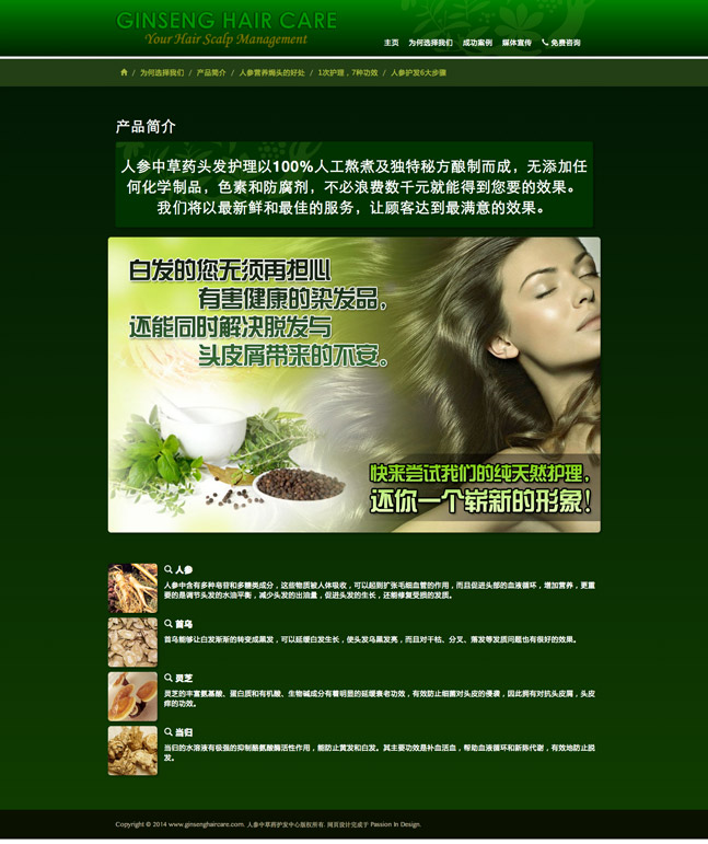 Ginseng Hair Care Chinese Website Screenshot