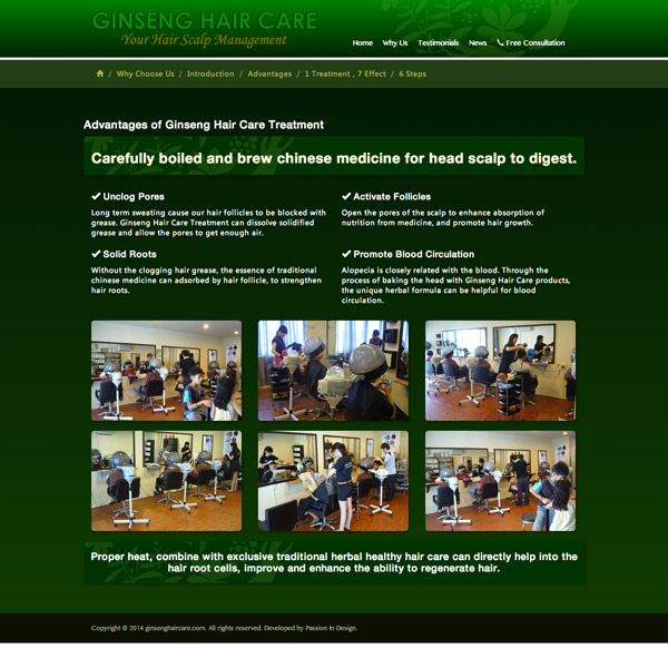 Ginseng Hair Care English Website Screenshot