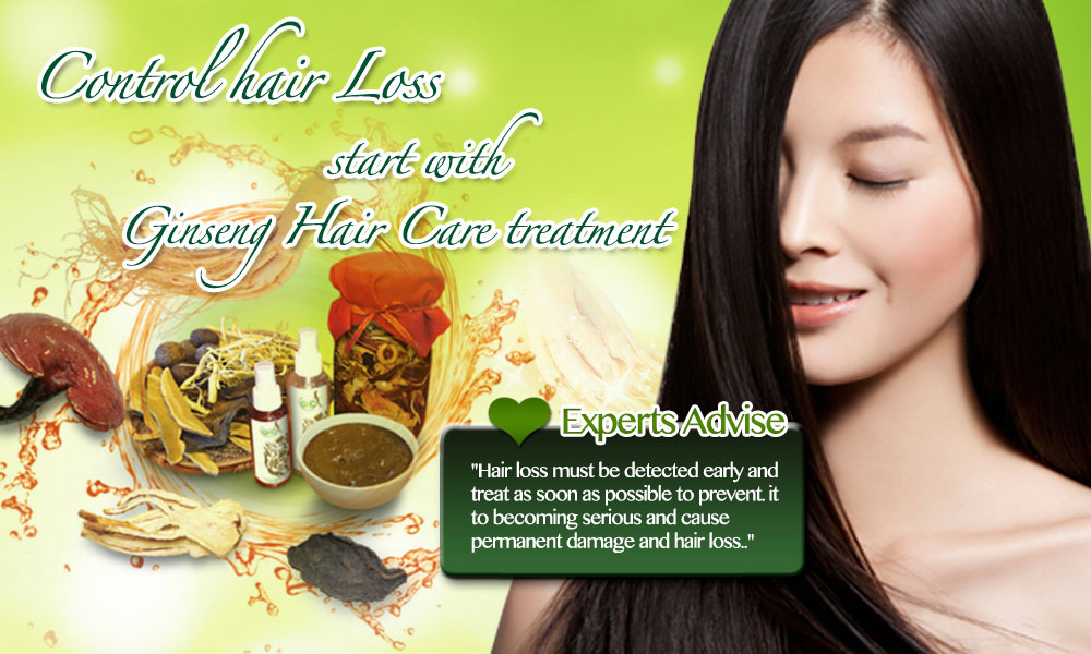 Ginseng Hair Care English Banner